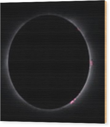 Totality Wood Print by Daniel Reed