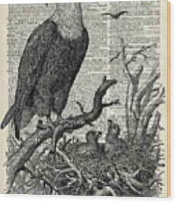 Eagle And Its Nest  Wood Print