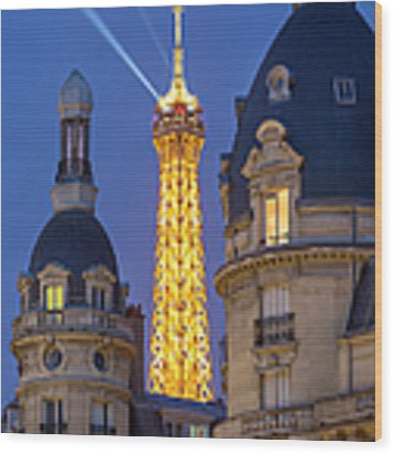 Eiffel Tower From Passy Wood Print by Brian Jannsen