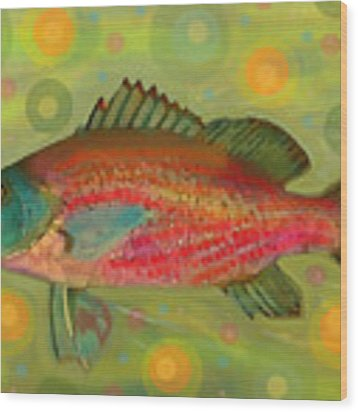 Fanciful Pink Snapper  Wood Print by Shelli Fitzpatrick
