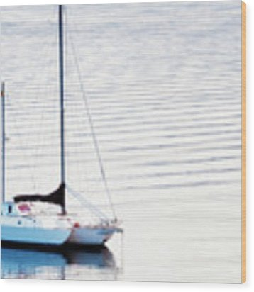 High Key Sail Wood Print by Dee Browning