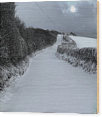 Jack Frost Wood Print by Michael Taggart
