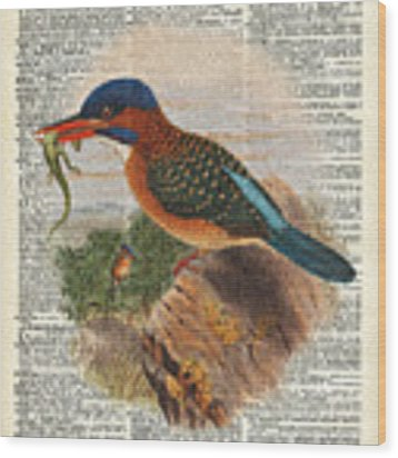 Kingfisher Bird With A Lizard Illustration Over A Old Dictionary Wood Print by Anna W