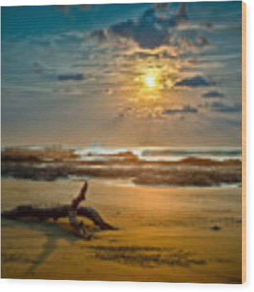 Late Afternoon Costa Rican Beach Scene Wood Print by Rikk Flohr