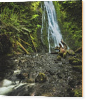 Madison Falls - An Elwha Sanctuary Wood Print by Expressive Landscapes Fine Art Photography by Thom