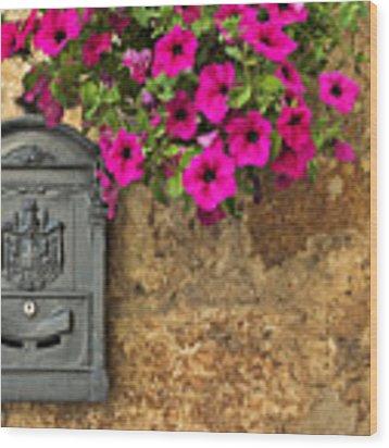 Mailbox With Petunias Wood Print by Silvia Ganora