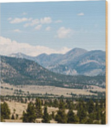 Montana Mountains Wood Print by Rosemary Legge