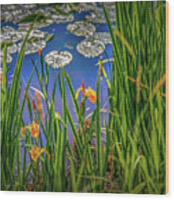 Nature's Window #h5 Wood Print by Leif Sohlman