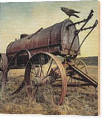 On The Water Wagon - Agricultural Relic Wood Print by Gary Heller