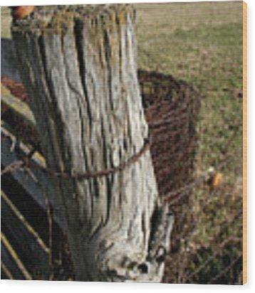 Open Post Wood Print by Dylan Punke