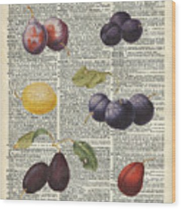 Plums Vintage Illustration Over A Old Dictionary Page Wood Print by Anna W