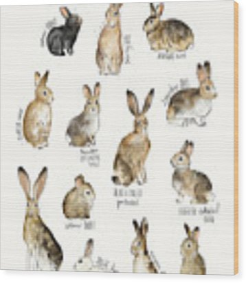 Rabbits And Hares Wood Print