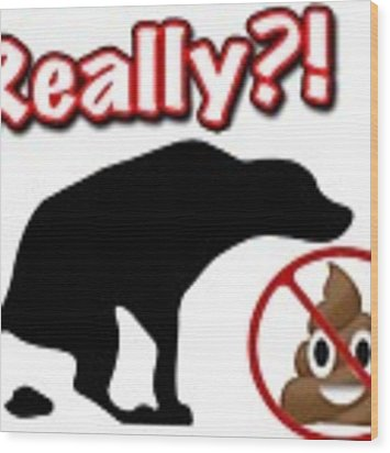 Really No Poop Wood Print by Kathy Tarochione
