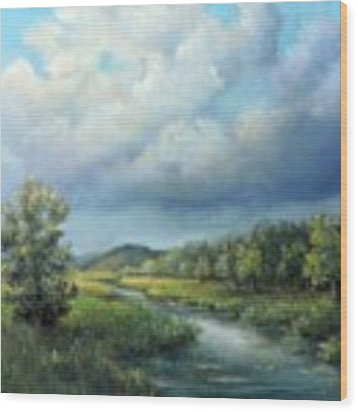 River Landscape Spring After The Rain Wood Print by Katalin Luczay