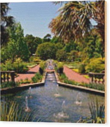 Botanical Gardens Wood Print by Lisa Wooten