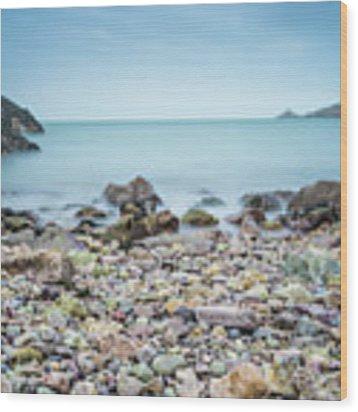 Rocky Beach Wood Print by James Billings