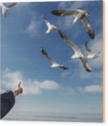 Seagull Flying Wood Print by Pradeep Raja PRINTS