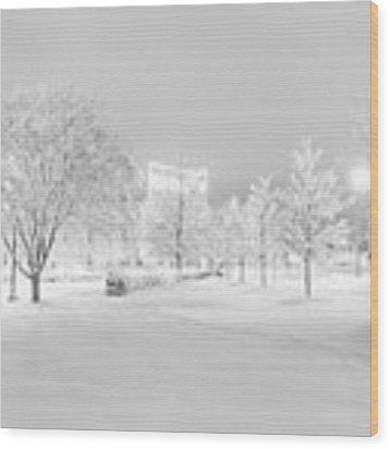 Snow On Pettigrew Wood Print by Ben Shields