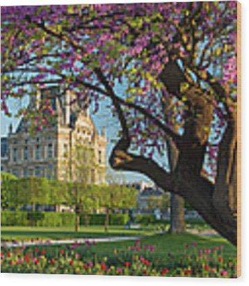 Springtime In Paris Wood Print by Brian Jannsen