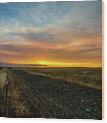 California Sunset Wood Print by Matthew Chapman