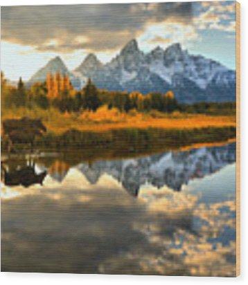 Teton Moose Sunset Stroll Wood Print by Adam Jewell