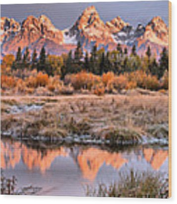Teton Reflections Amonth The Willows Wood Print by Adam Jewell