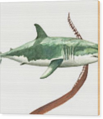 The Great White Shark And The Octopus Wood Print