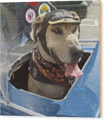 Tourist Dog 2 Square Wood Print by Karen Zuk Rosenblatt