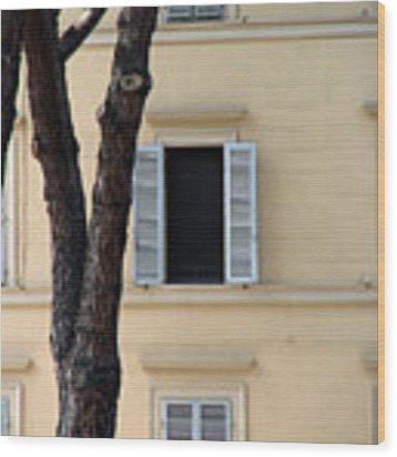 Tuscany Window Wood Print by Julian Perry