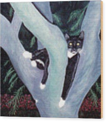 Tuxedo Cat In Mimosa Tree Wood Print by Karen Zuk Rosenblatt