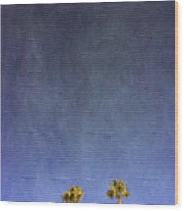 Two Palm Trees- Art By Linda Woods Wood Print by Linda Woods