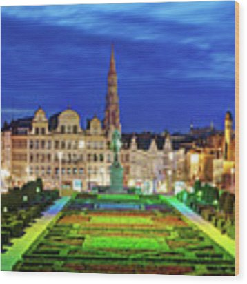 View Of Brussels From Jardin Du Mont Des Arts Wood Print by Barry O Carroll