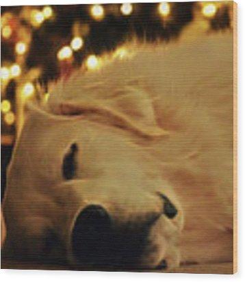 Waiting For Santa Wood Print by Patti Whitten