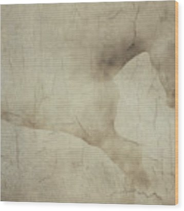 Wall With Picture Of A White Horse Wood Print by Jan Keteleer