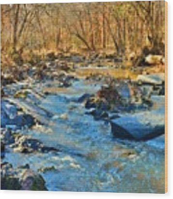 What Streams Are Made Of Wood Print by Lisa Wooten