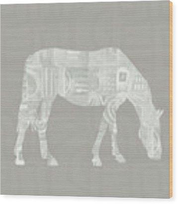 White Horse 2- Art By Linda Woods Wood Print