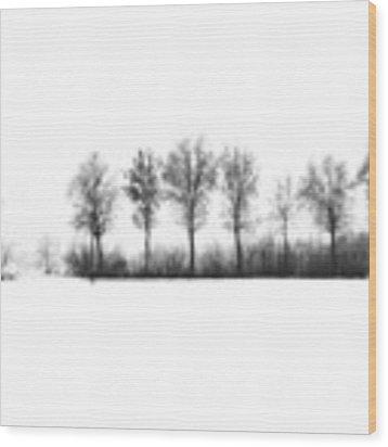 Winter Bareness Wood Print by Silvia Ganora