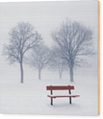 Winter Trees And Bench In Fog Wood Print