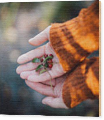Woman Hands Holding Cranberries Wood Print by Aldona Pivoriene