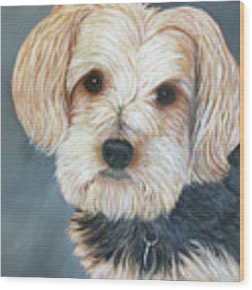Yorkie Portrait Wood Print by Karen Zuk Rosenblatt