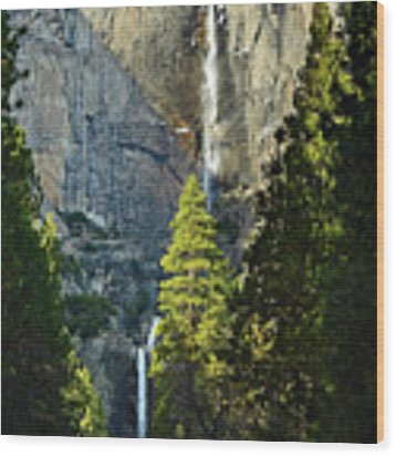 Yosemite Falls With Late Afternoon Light In Yosemite National Park. Wood Print by Jamie Pham