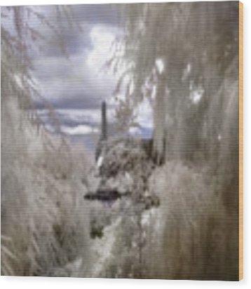 Zakim Bridge - North Point Park - Boston Wood Print by Joann Vitali