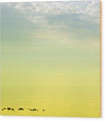 Zen Seascape Wood Print by Silvia Ganora