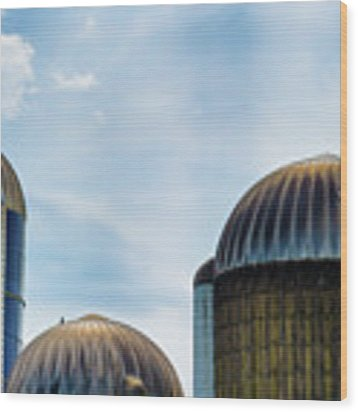 Agricultural Silos Of Rural West Virginia Wood Print by Dee Browning