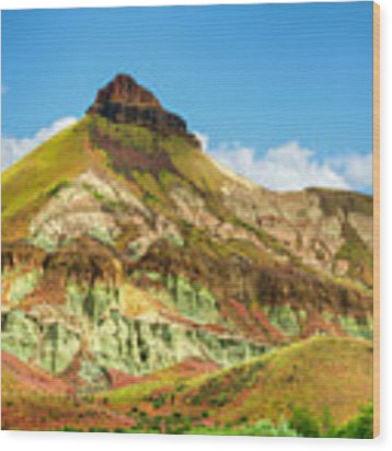 John Day Fossil Beds Sheep Rock Unit Landscape Wood Print by Dee Browning