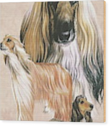 Afghan Hound Alteration Wood Print by Barbara Keith