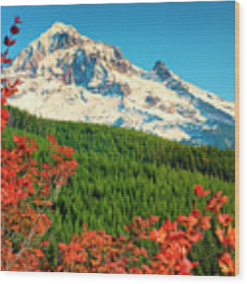 Autumn In Lolo Pass Mt. Hood National Forest Wood Print by Dee Browning