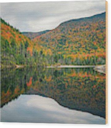 Beaver Pond Wood Print by James Billings