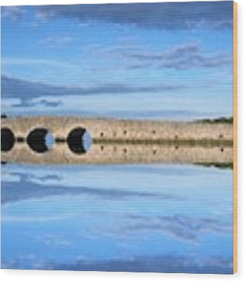 Belvelly Castle Reflection Wood Print by Joan Stratton