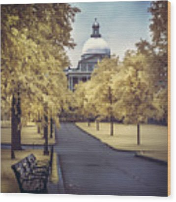 Boston Common And The State House Wood Print by Joann Vitali